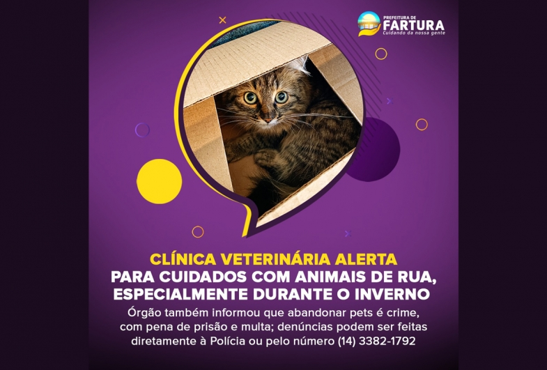 Clínica Veterinária de Fartura alerta para cuidados com animais de rua, especialmente durante o inverno