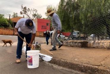 """""""Todos por Fartura"""": bairros Bela Vista e Cidade Feliz recebem mutirão de limpeza no próximo sábado (16)"""