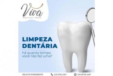 Entenda a importância da limpeza dentária
