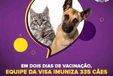 Em dois dias de vacinação, equipe da VISA imuniza 335 cães e gatos contra a Raiva Animal