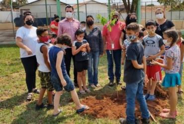 Secretaria do Meio Ambiente comemora o dia da árvore com plantio de mudas em Itaí